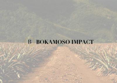 Bokamoso Impact